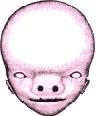 Embryo 4